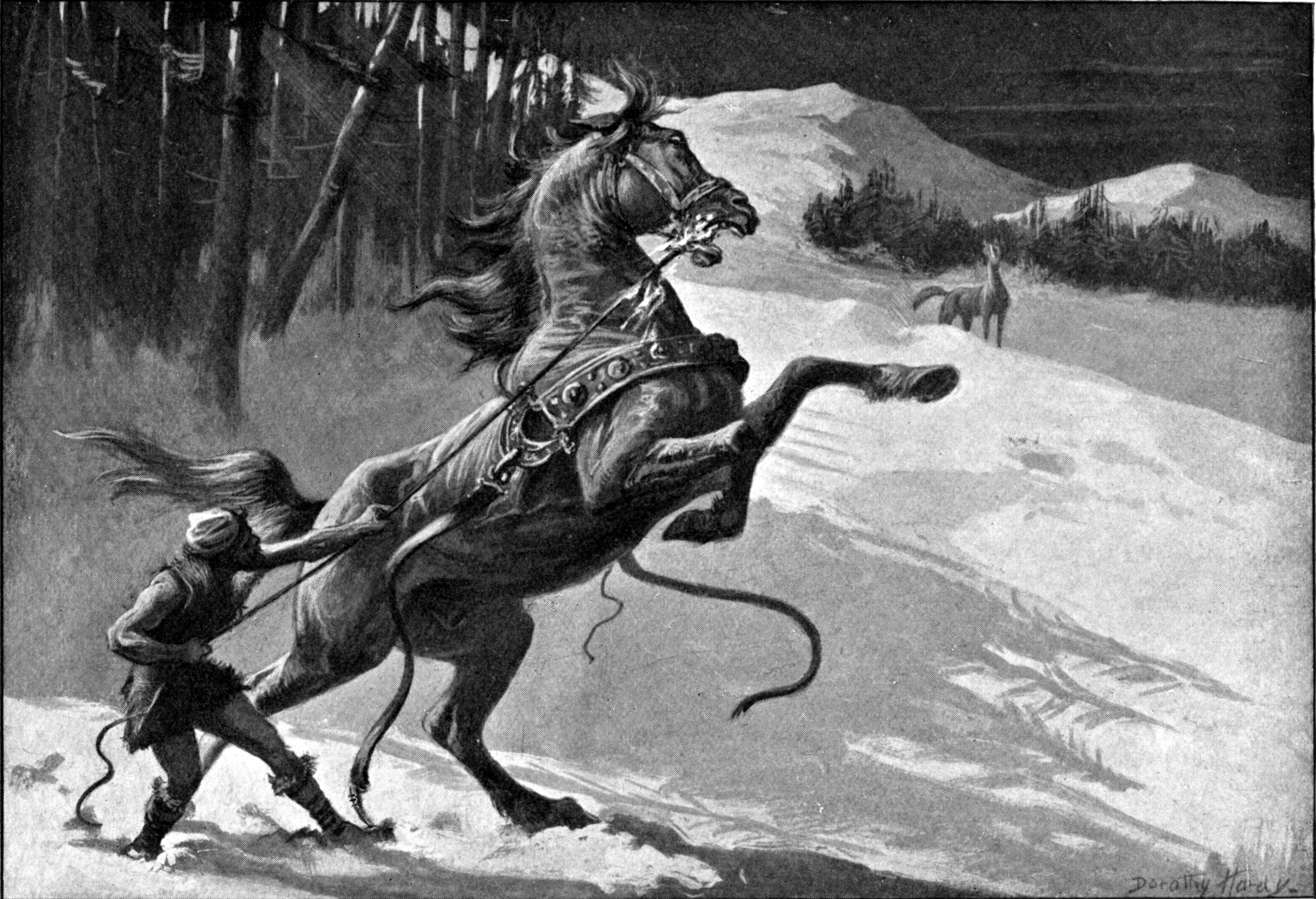 animals in norse mythology tales from the fairies